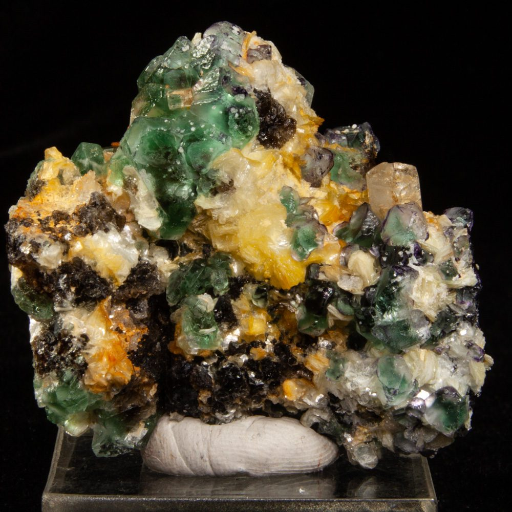 Fluorite and Goshenite