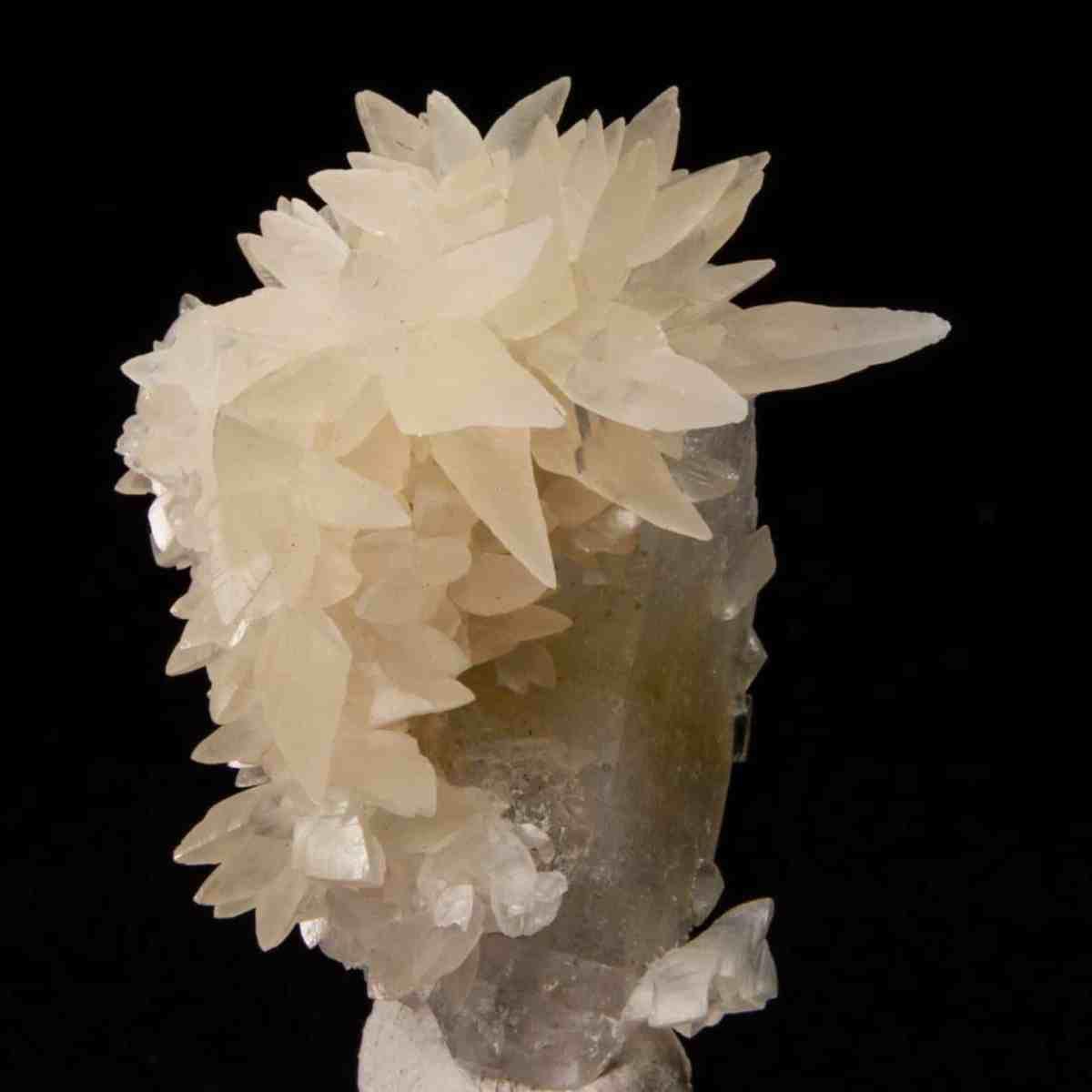 Calcite with Apophyllite