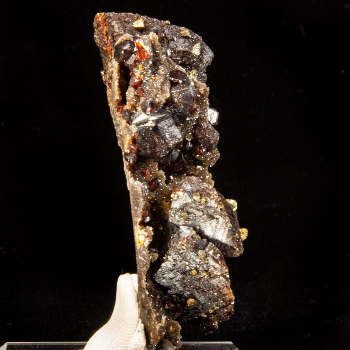 Sphalerite with Chalcopyrite