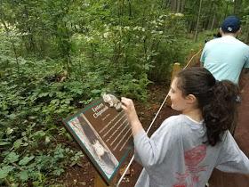 Sensory Trail - signage
