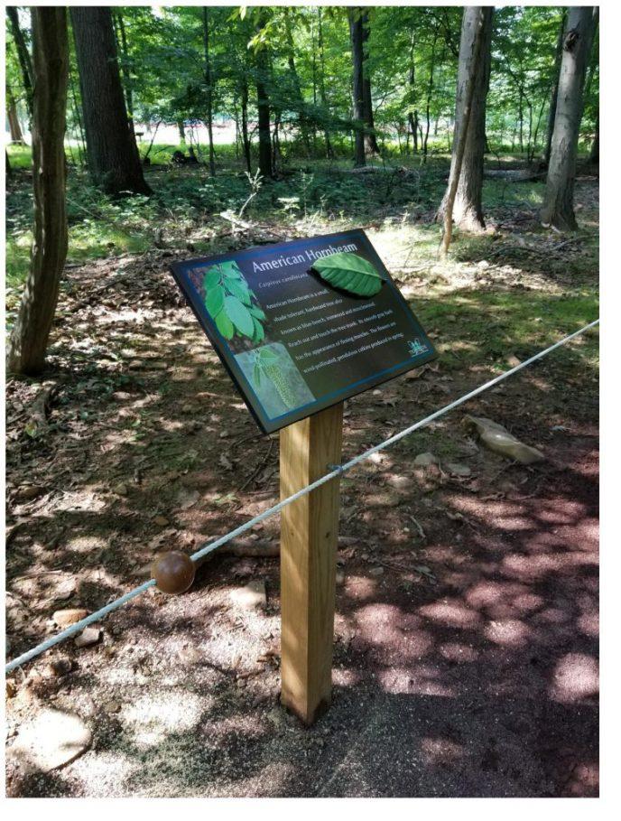 sensory-trail-guide-rope-signage-775x1024