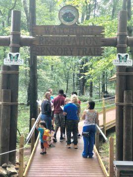 sensory-trail-walking-up-entrance-boardwalk-768x1024