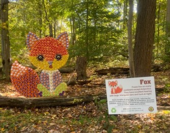 2020 recycled art wildlife walk fox.pdf