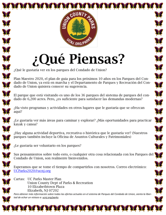 Master Plan Flyer (Spanish)-1