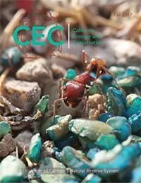 cover of Fall 2017 CEC Research showing a close up of a red ant crawling over blue sand grains