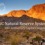 UC Natural Reserve System launches fundraising campaign