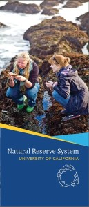 cover of NRS brochure with a photo of two young women looking at a sea star at a tidepool