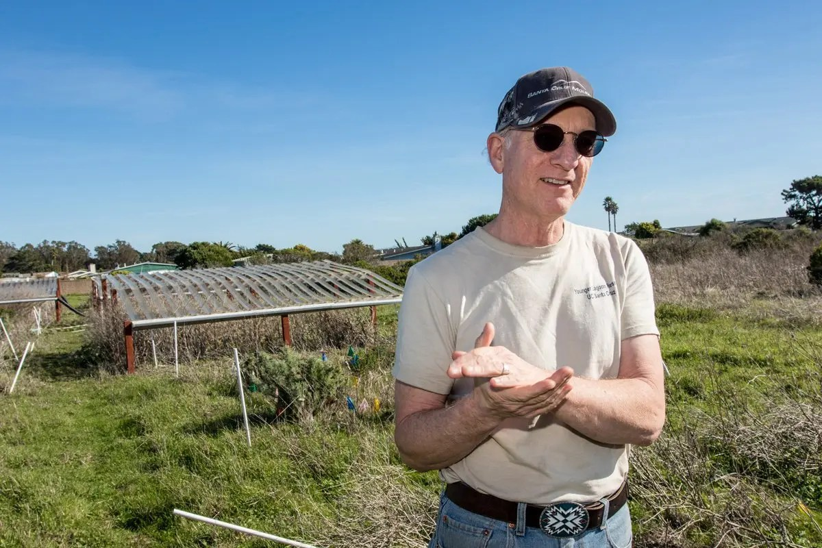 Professor Michael Loik stands before his drought shelters on the coastal prairie at Younger Lagoon Reserve