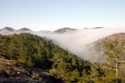 fog enters a valley at Santa Cruz Island Reserve