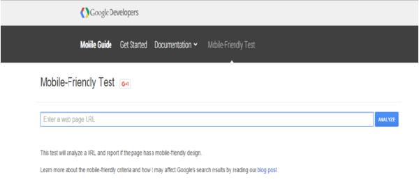 google test page
