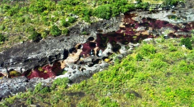 Разноцветная река Каньо Кристалес - самая красивая в мире. Фото