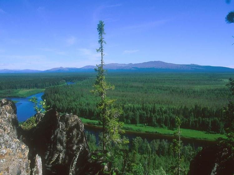 Река Илыч Печоро-Иычского заповедника. Республика Коми. Фото