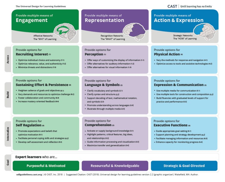 This is a PDF of the UDL guidelines. Multiple version are available from: http://udlguidelines.cast.org/more/downloads One of these may better meet your needs.