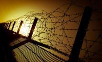 Captivity...