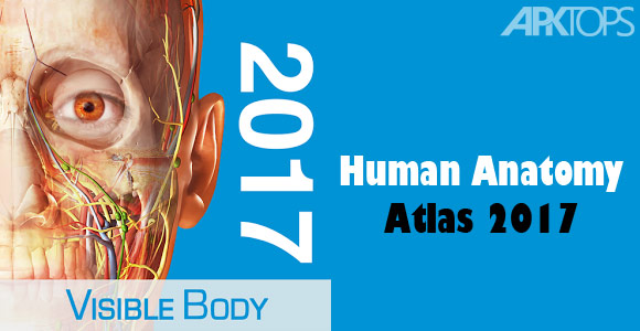 Human Anatomy Atlas v2019 1 38 Apk is Available ! – UdownloadU