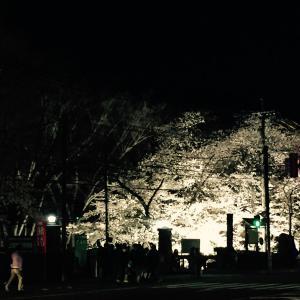 上田城跡公園 上田城千本桜まつり 二の丸橋