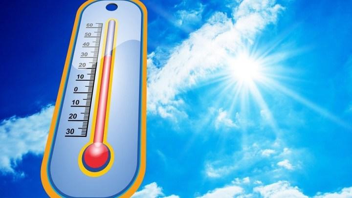 So übersteht man die Hitzewelle – BARMER schaltet medizinische Hotline