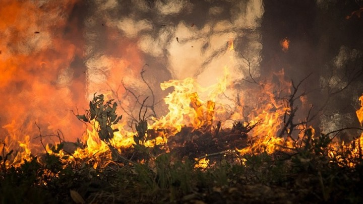 Rekord: 347 Brandmeldungen registriert
