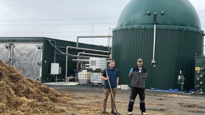 Aus Pferdemist wird Biogas und wertvoller Kompost