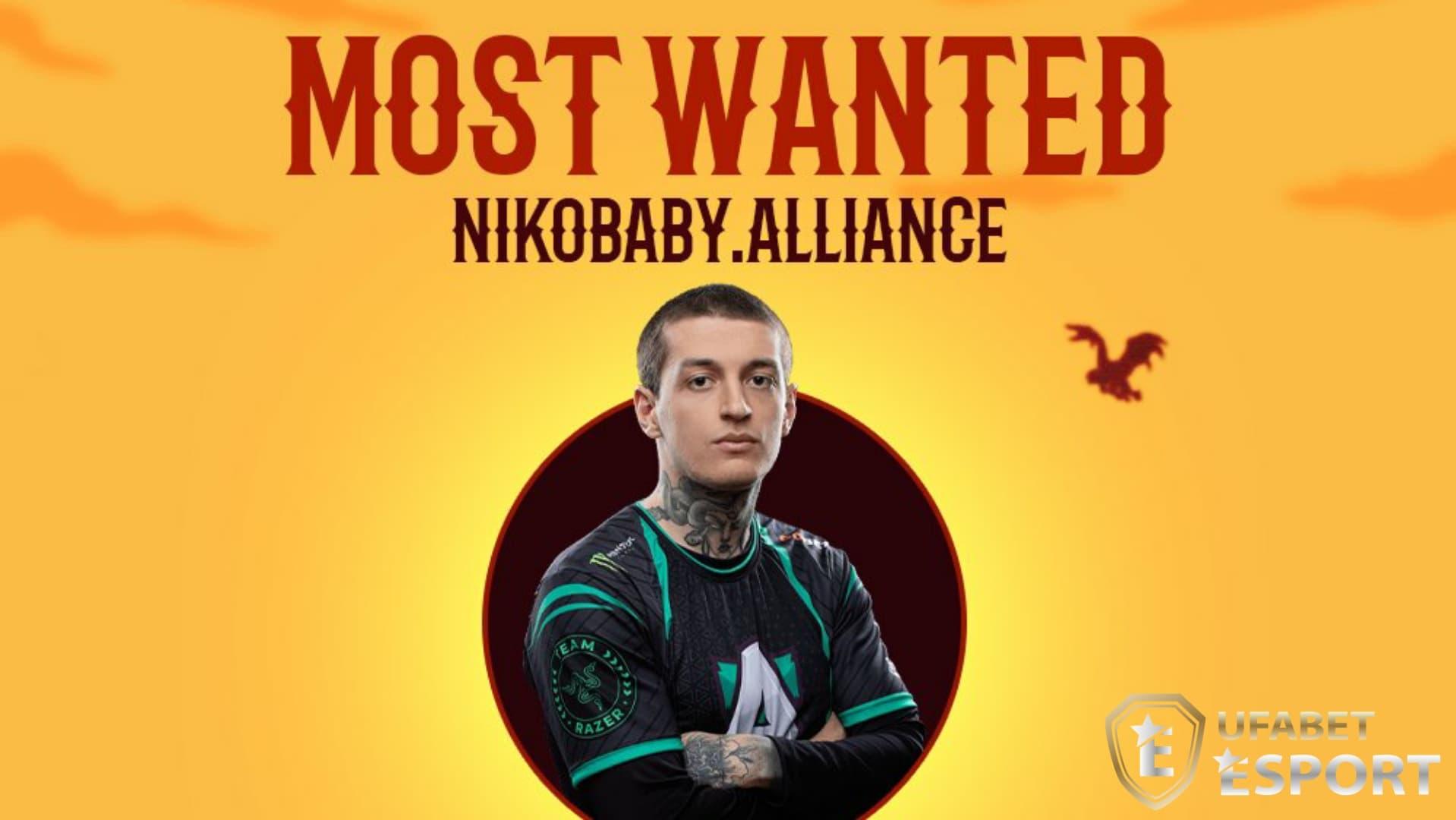 nikobaby alliance