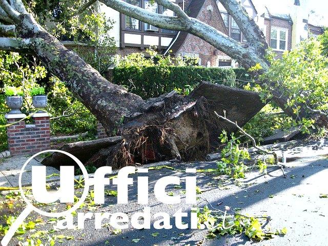 Continuità operativa Disaster recovery
