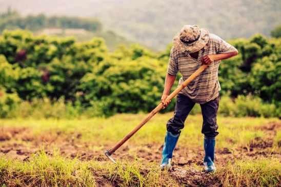Nueva tecnología en la agricultura