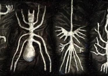 Peru Nazca Alien Forms