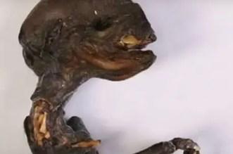 Russian Alien Corpse