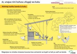 Je unajua nini kuhusu ufugaji wa kuku 300x212 - Je, unajua nini kuhusu ufugaji wa kuku?