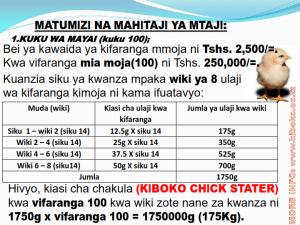 chicken management swahili 009 300x225 - Ufugaji wa kuku kwa njia ya kisasa