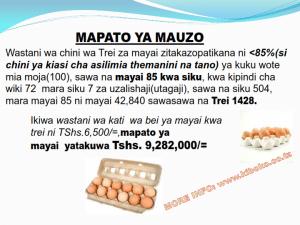 chicken management swahili 016 300x225 - Ufugaji wa kuku kwa njia ya kisasa