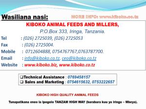 chicken management swahili 029 - Ufugaji wa kuku kwa njia ya kisasa