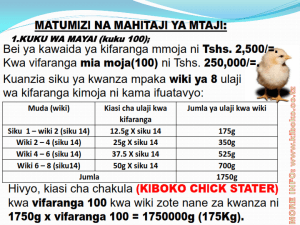 chicken management swahili_009