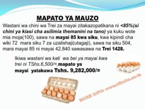 chicken management swahili 016 300x225 - Ufugaji wa kuku: Namna ya kuanza na mchanganuo wa mapato na matumizi