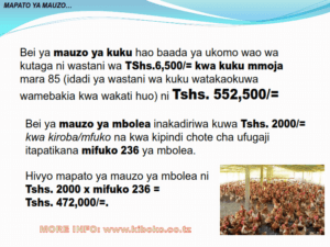 chicken management swahili 017 300x225 - Ufugaji wa kuku: Namna ya kuanza na mchanganuo wa mapato na matumizi