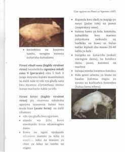 Pict6 - Ujue ugonjwa wa homa ya nguruwe (african swine fever)