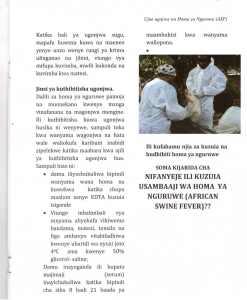 Pict9 - Ujue ugonjwa wa homa ya nguruwe (african swine fever)