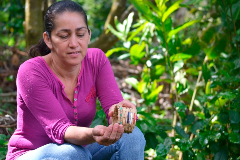 Elisa spills coffee beans into her hands, discussing the natural bean-drying process, which typically takes up to 22 days in the misty Monteverde cloud forest.