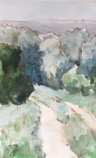 Hill Country Trail watercolor on paper