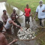 Status of Fisheries Management in Uganda