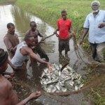 Status of Fisheries Management in Uganda
