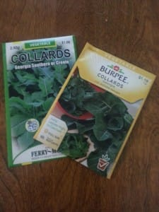 Collard Green Seeds
