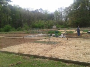 The in-ground gardens at Woodstock Community Garden make it easy for a tiller to work the soil.