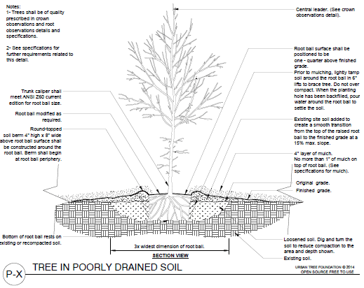 ANSI planting details and specifications for landscape designs