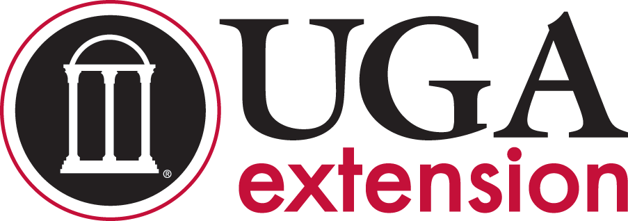 Problems Your Extension Agents Are Seeing