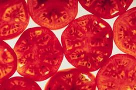 tomatoslices