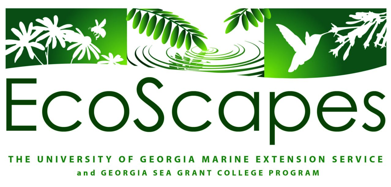 EcoScapes_03