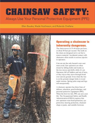 CHAINSAW SAFETY Always Use Your Personal Protective Equipment (PPE) page 1