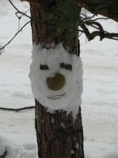 Sniego kaukes (2)