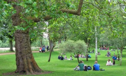 Greenspaces to promote health and recreation for urban dwellers